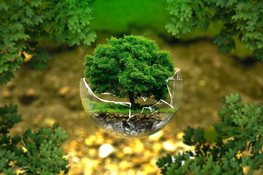 POB6 - ochrona klimatu i środowiska, nowoczesna energetyka