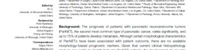 Predicting Metastasis Risk in Pancreatic Neuroendocrine Tumors Using Deep Learning Image Analysis